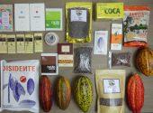 Colombia: viaggio alla ricerca del cacao